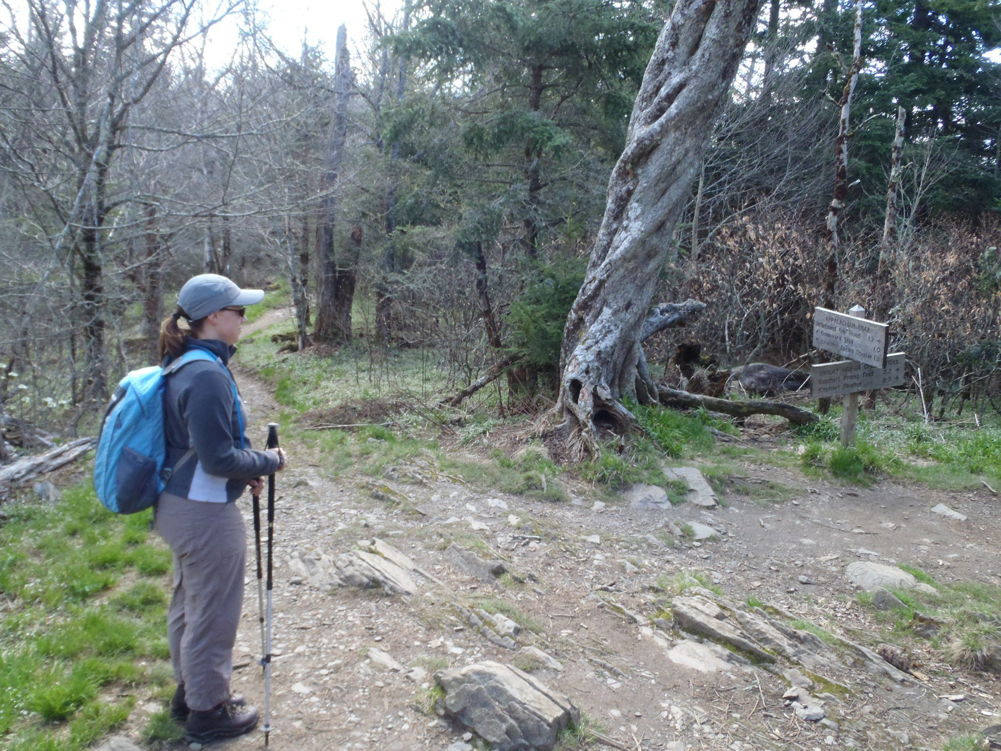 Hiking on the Appalachian Trail in the Spring of 2011 - thinking how hard it would be to go all the way to Maine one day!