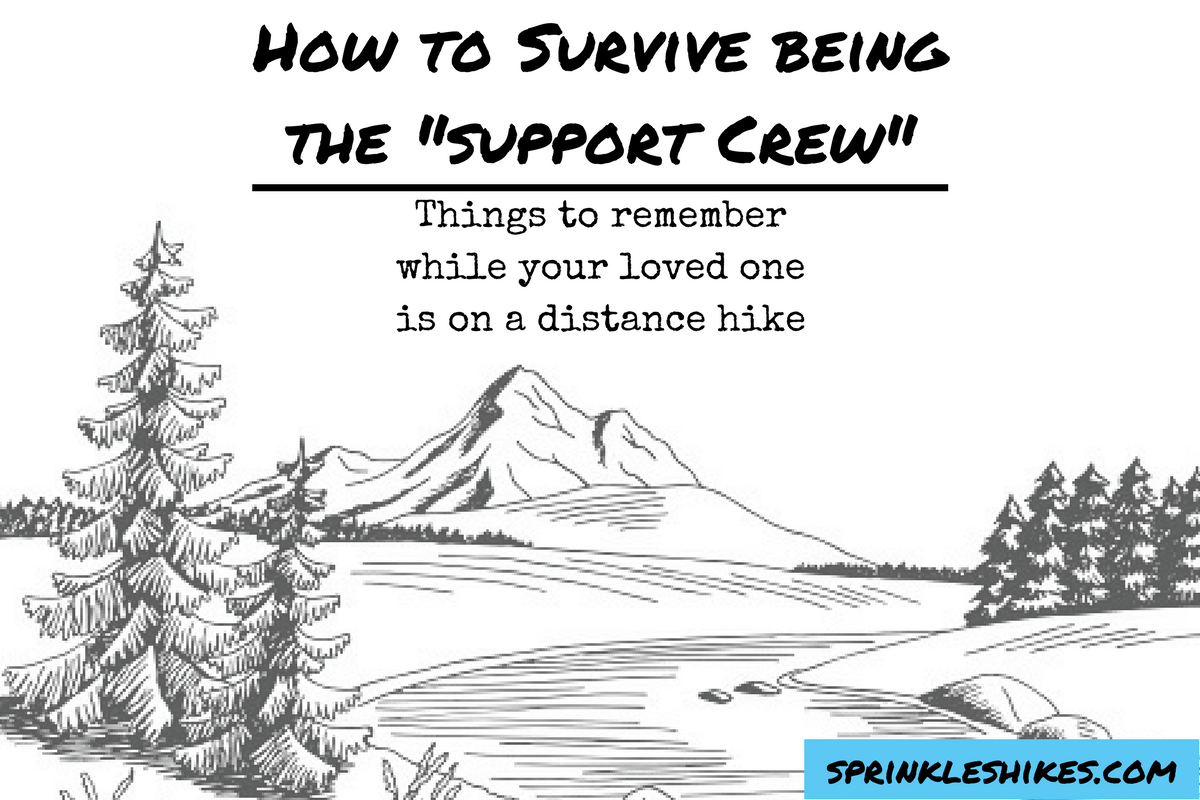 How to Survive beingthe _support Crew_.png