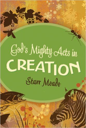 God's Mighty Acts in Creation - Meade.jpg