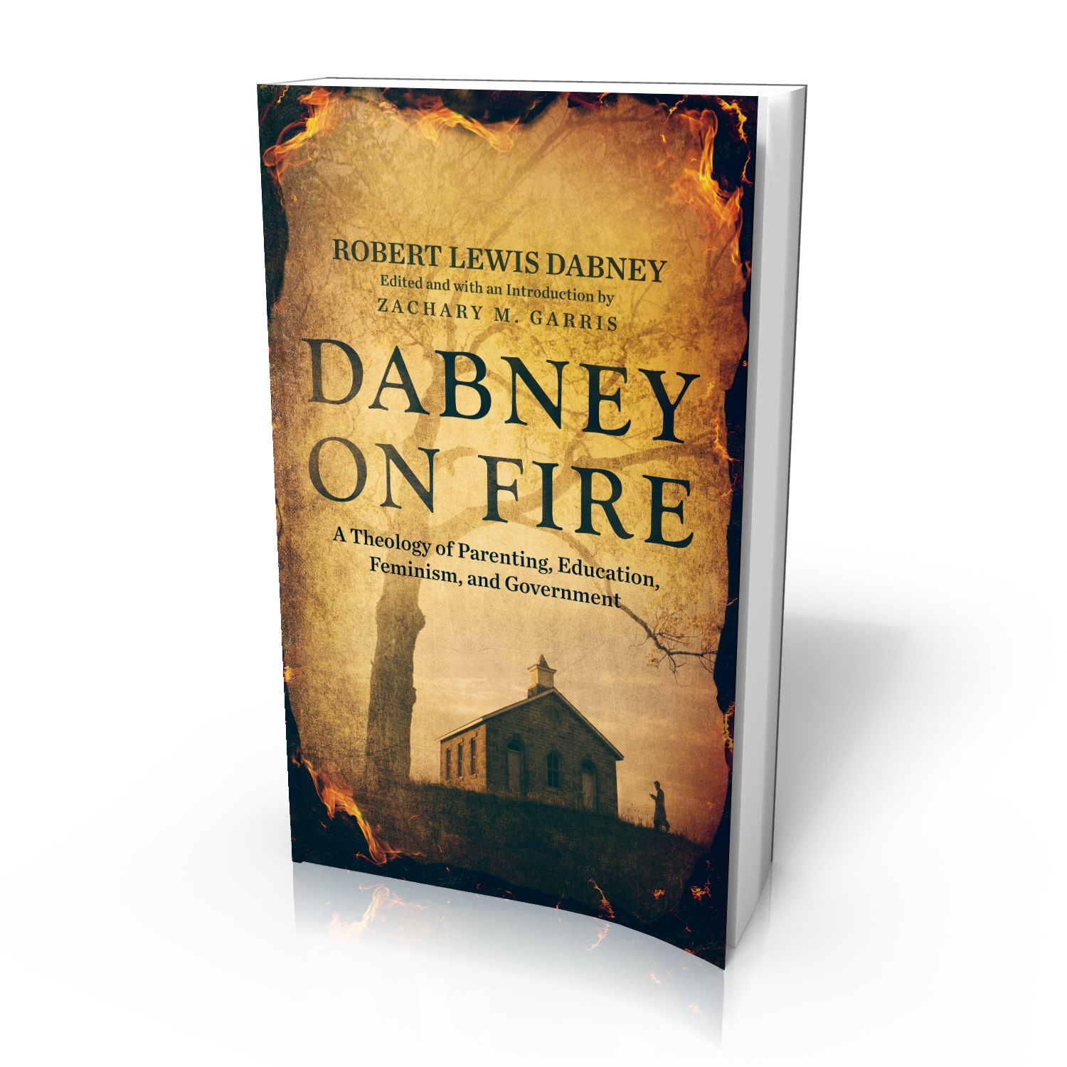 Dabney On Fire - 3D.png