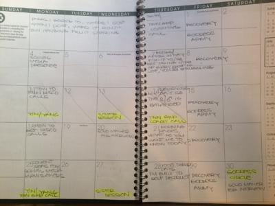 A Sneak Peak of my July Social Media Calendar