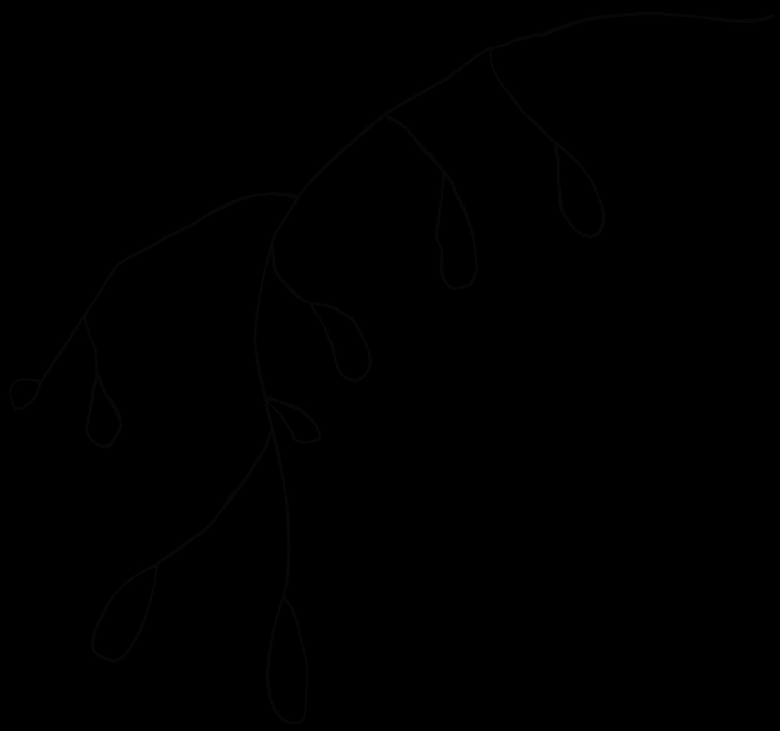 crysalis-plants-02.png
