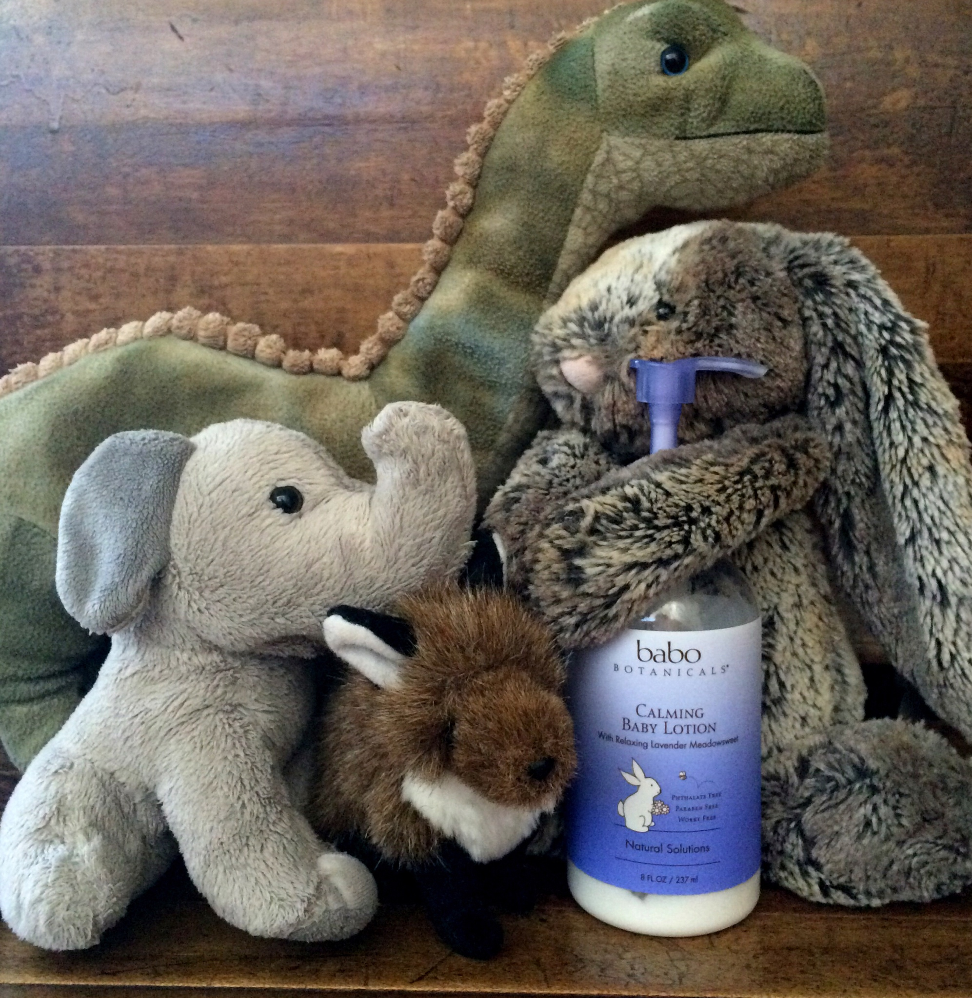 Snuggly Dinosaur, Elephantie, Bunny, and Mr. Fox love Babo, too!