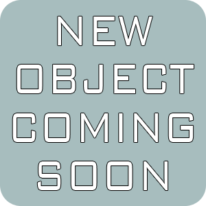 New Object Coming Soon.png