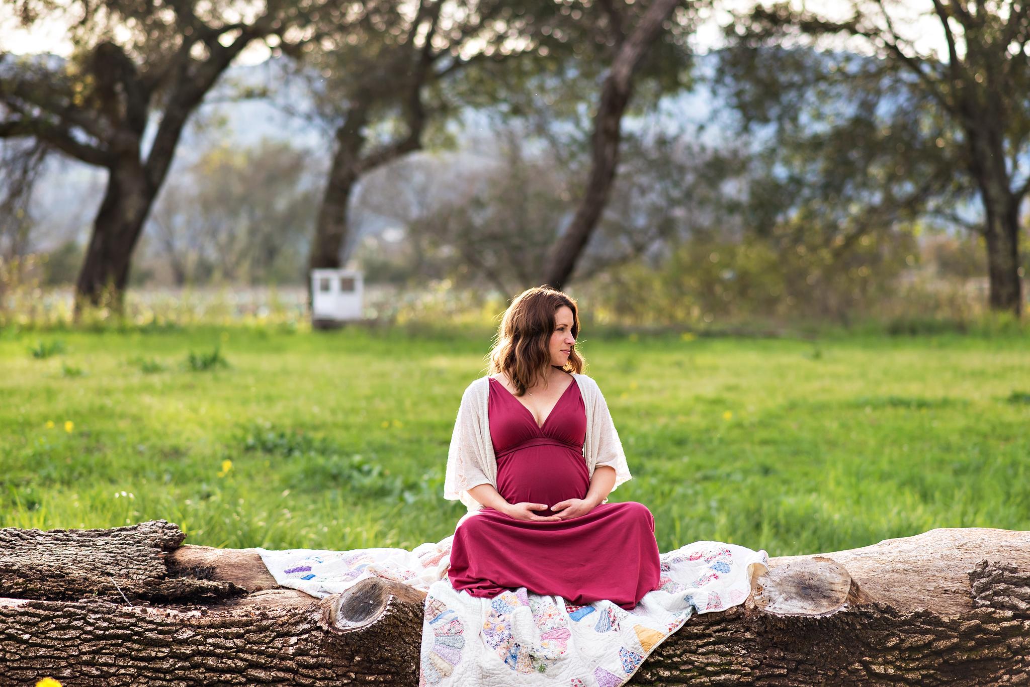 Justine Di Fede Photography Maternity -1.jpg