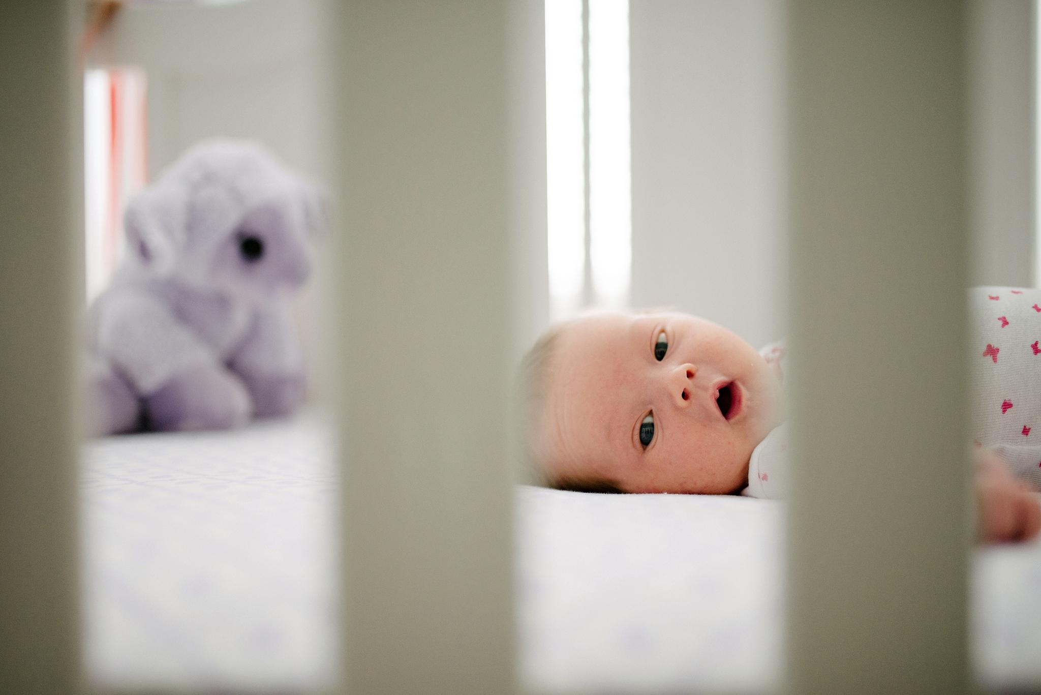 Justine Di Fede Photography Newborns -26.jpg