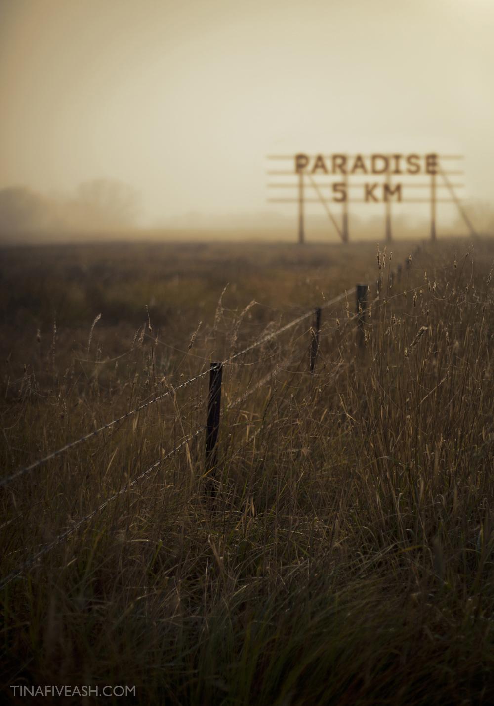 PARADISE-5KM-TINA-FIVEASH.jpg