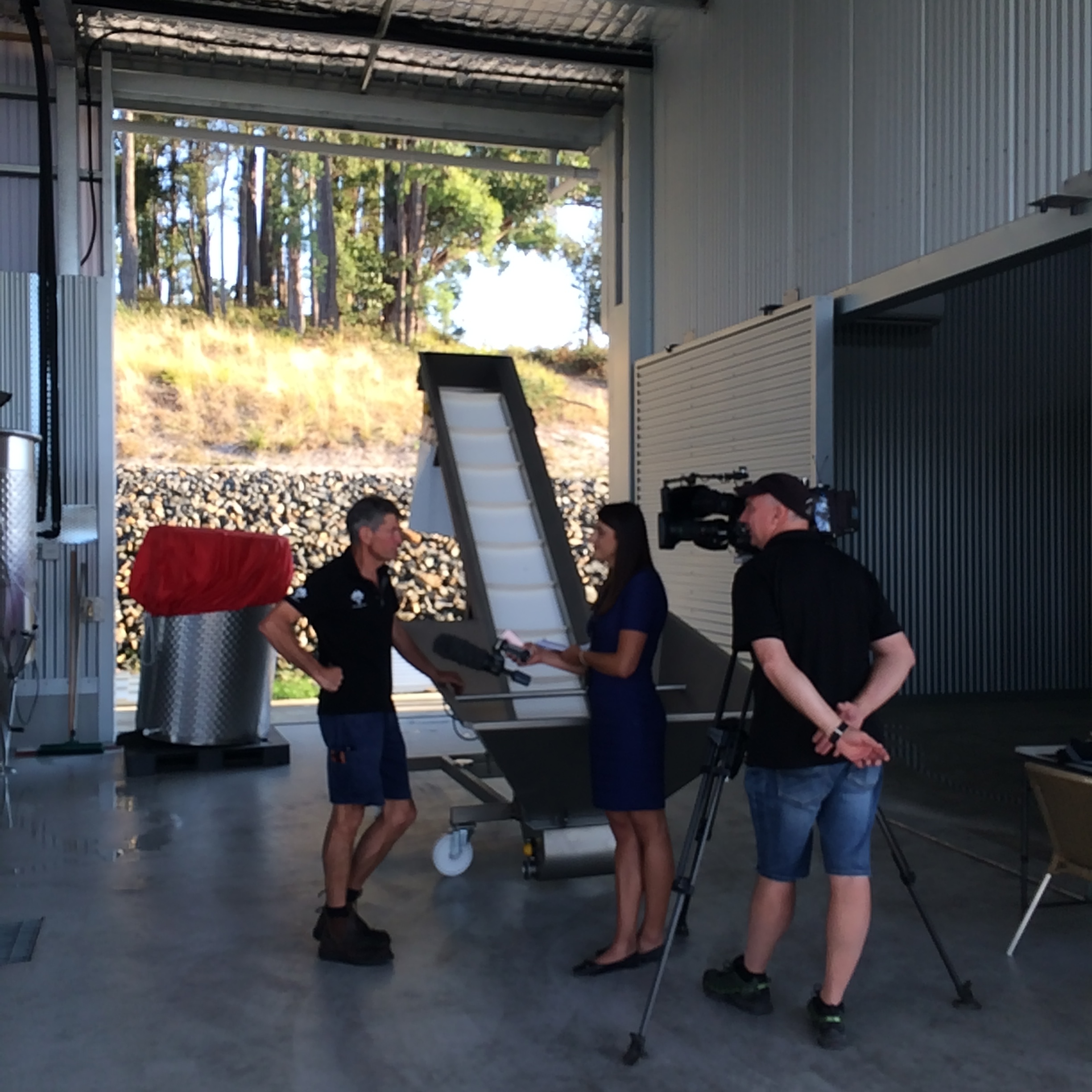 ABC TV News dropped in to film a story on the progress of vintage 2017