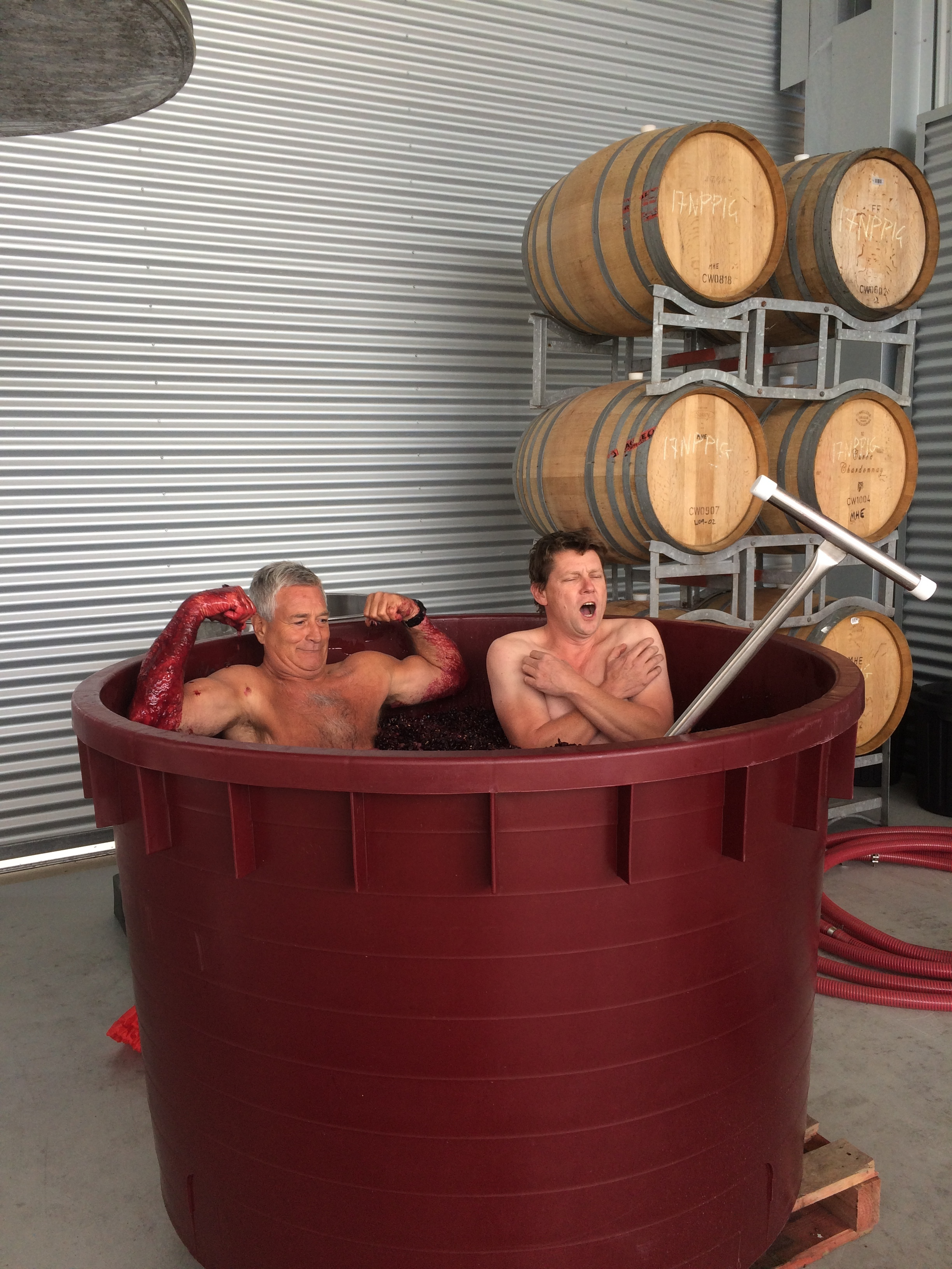 Post lunch hi-jinks in the Cabernet ferment