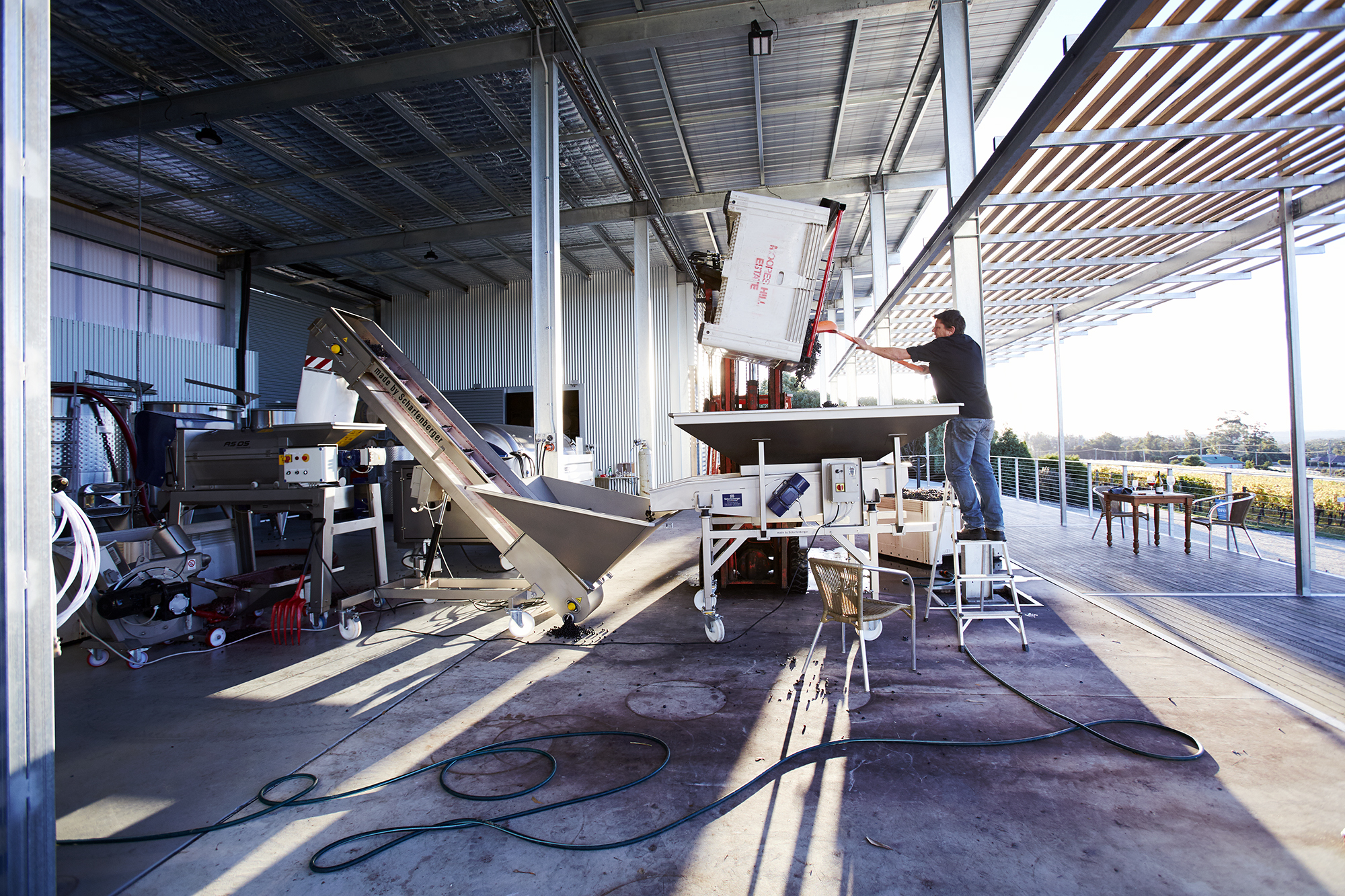Making wine powered by the sun at Moores Hill