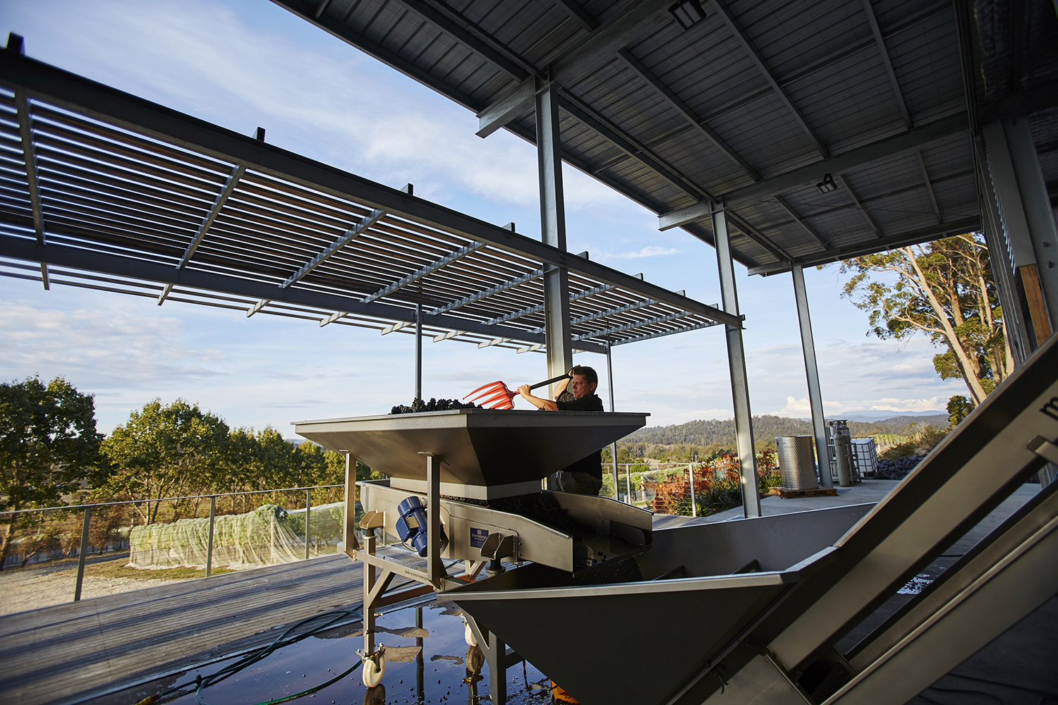 Winemaker Julian Allport at work in our solar powered winery