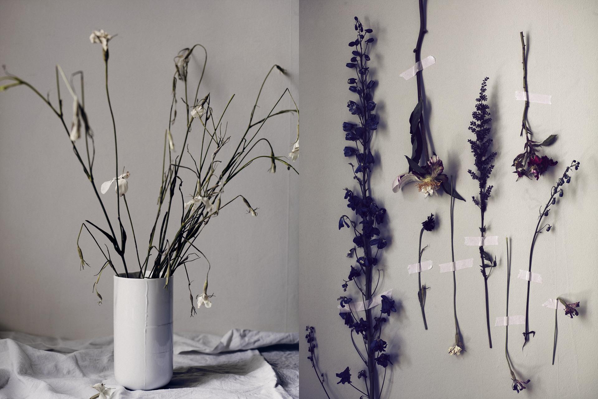 FLOWERS 53914.jpg