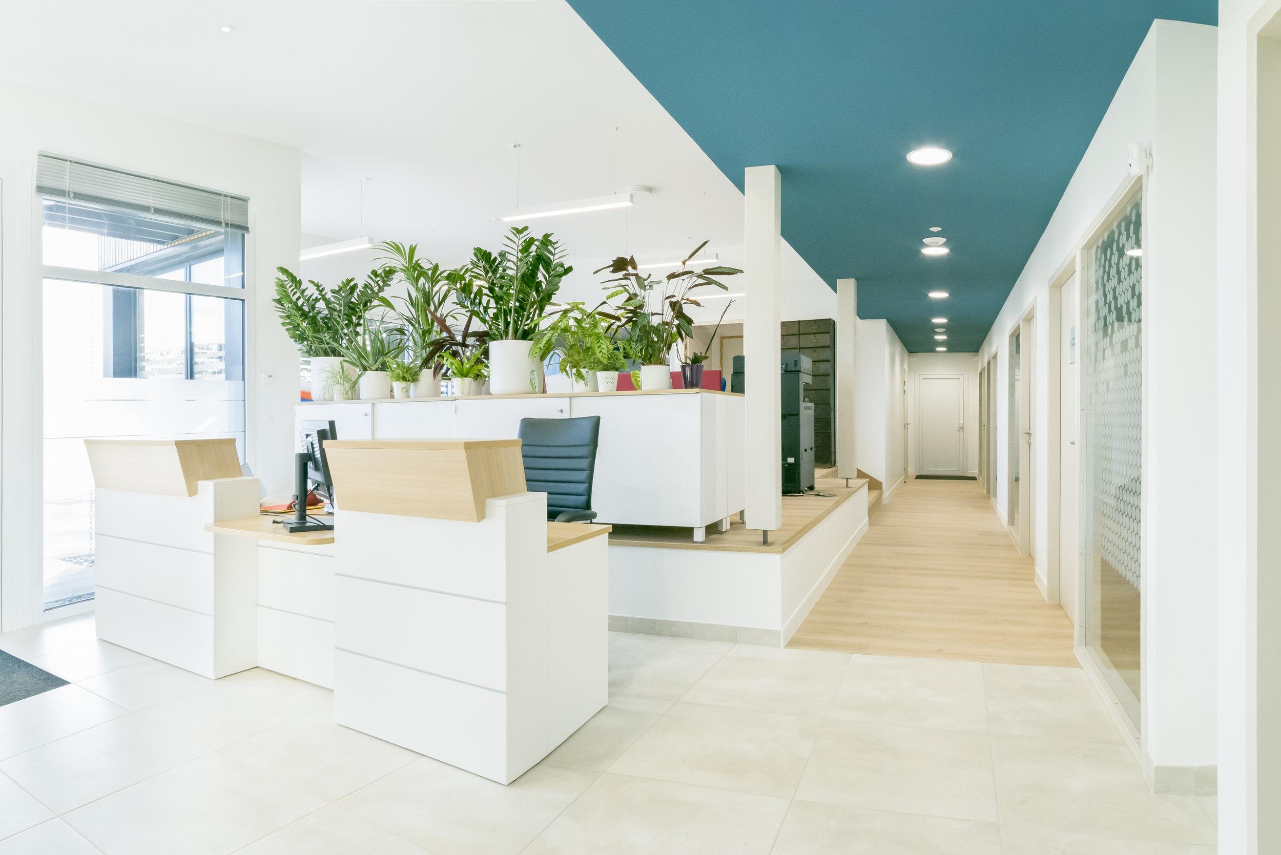 Office Notarial Guémené-Penfao Rennes (35) Maro Architectes construction 3.jpg