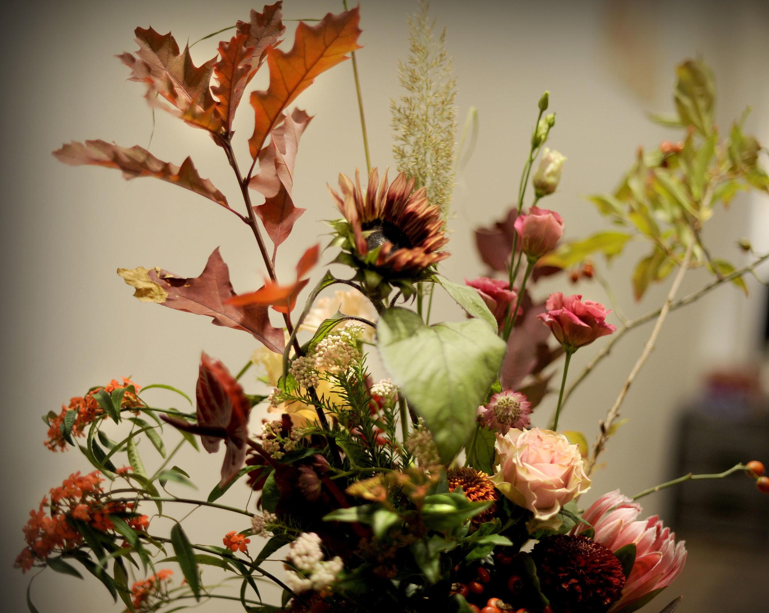 JUDITH Lingerie Hopland herfst.JPG