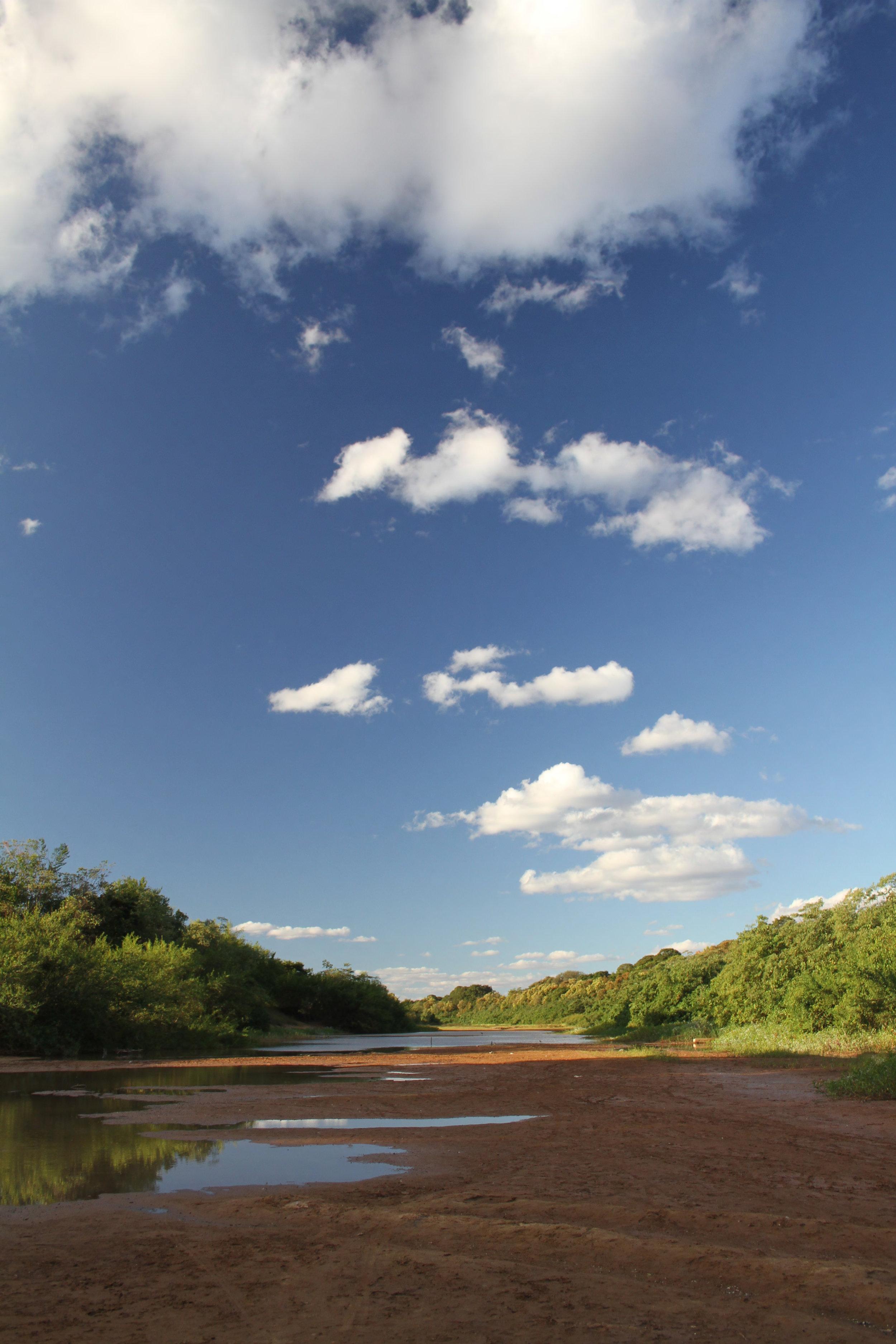 Riverbed in the Cerrado Biome region of Brazil. Photo Credit: Patti Dunne