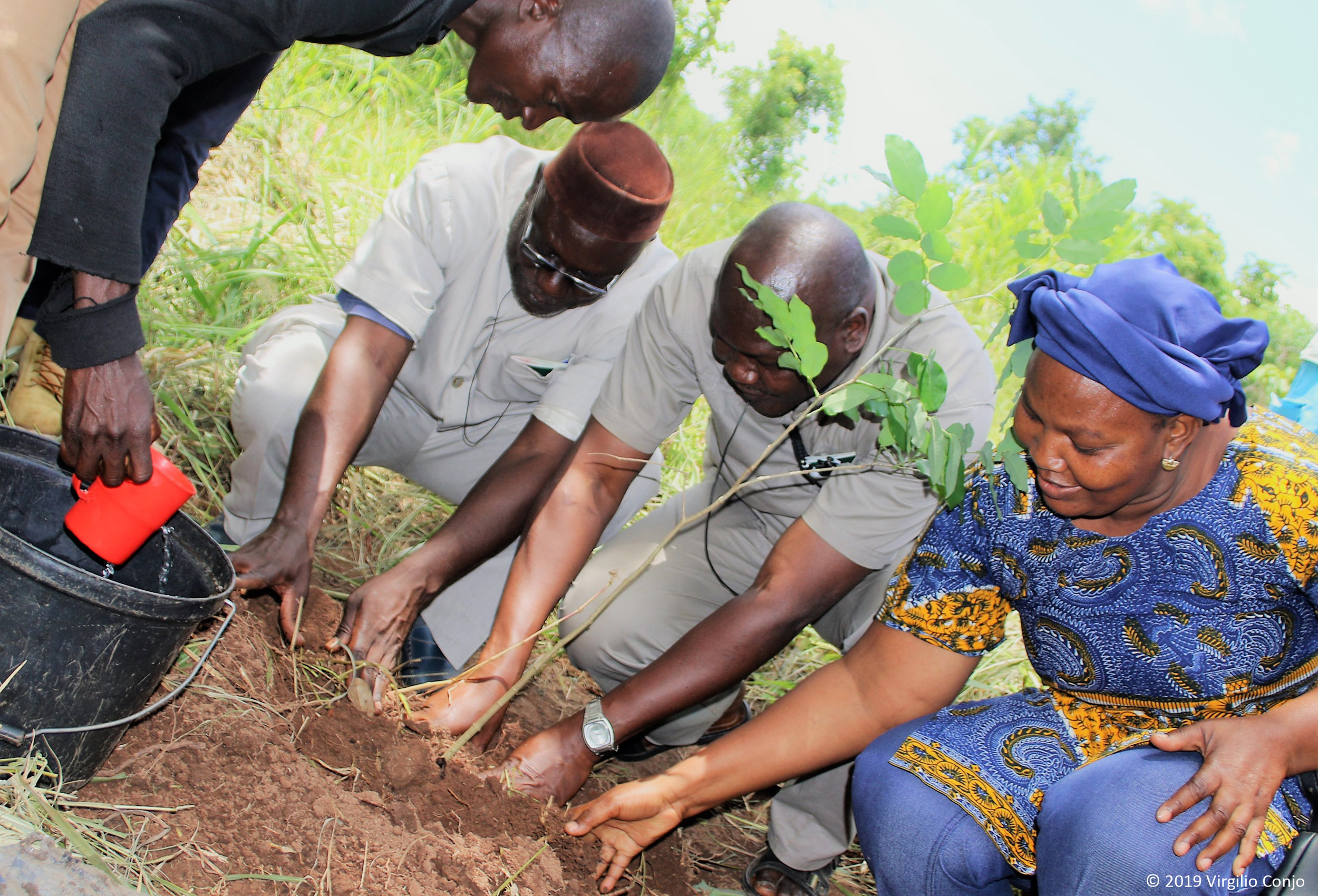 DGM Burkina Faso representatives water their newly planted tree in the Canda community of Gorongosa, Mozambique