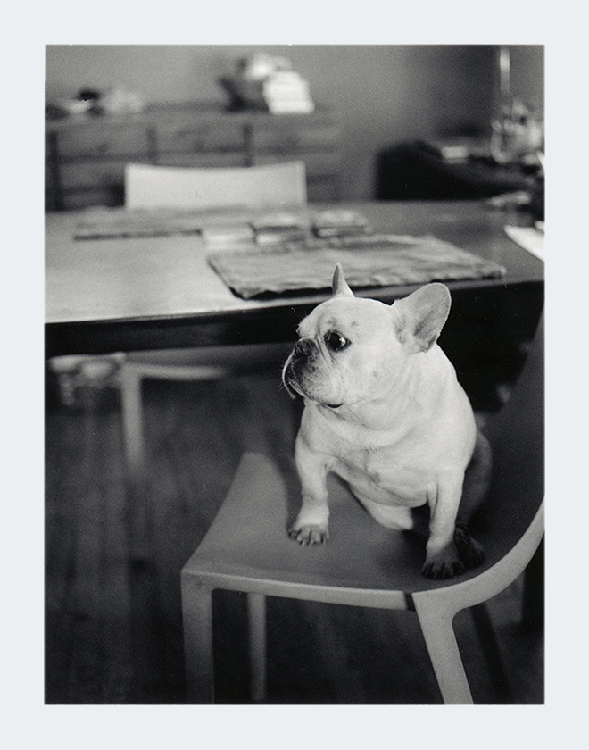 Pablo: Photograph taken on a Polaroid 600SE