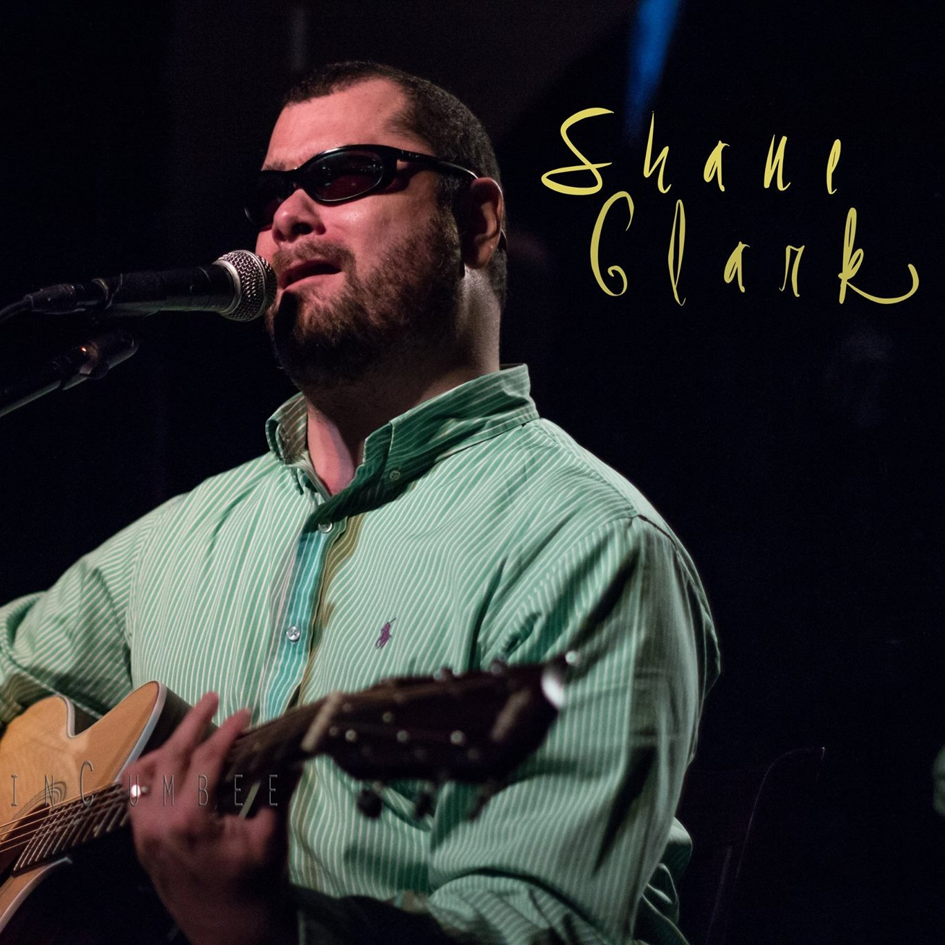 Shane Clark   Solo Acoustic Guitarist, Vocalist  Variety