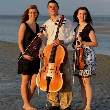 Coastal Chamber Musicians   Solo, Duo or Trio Strings