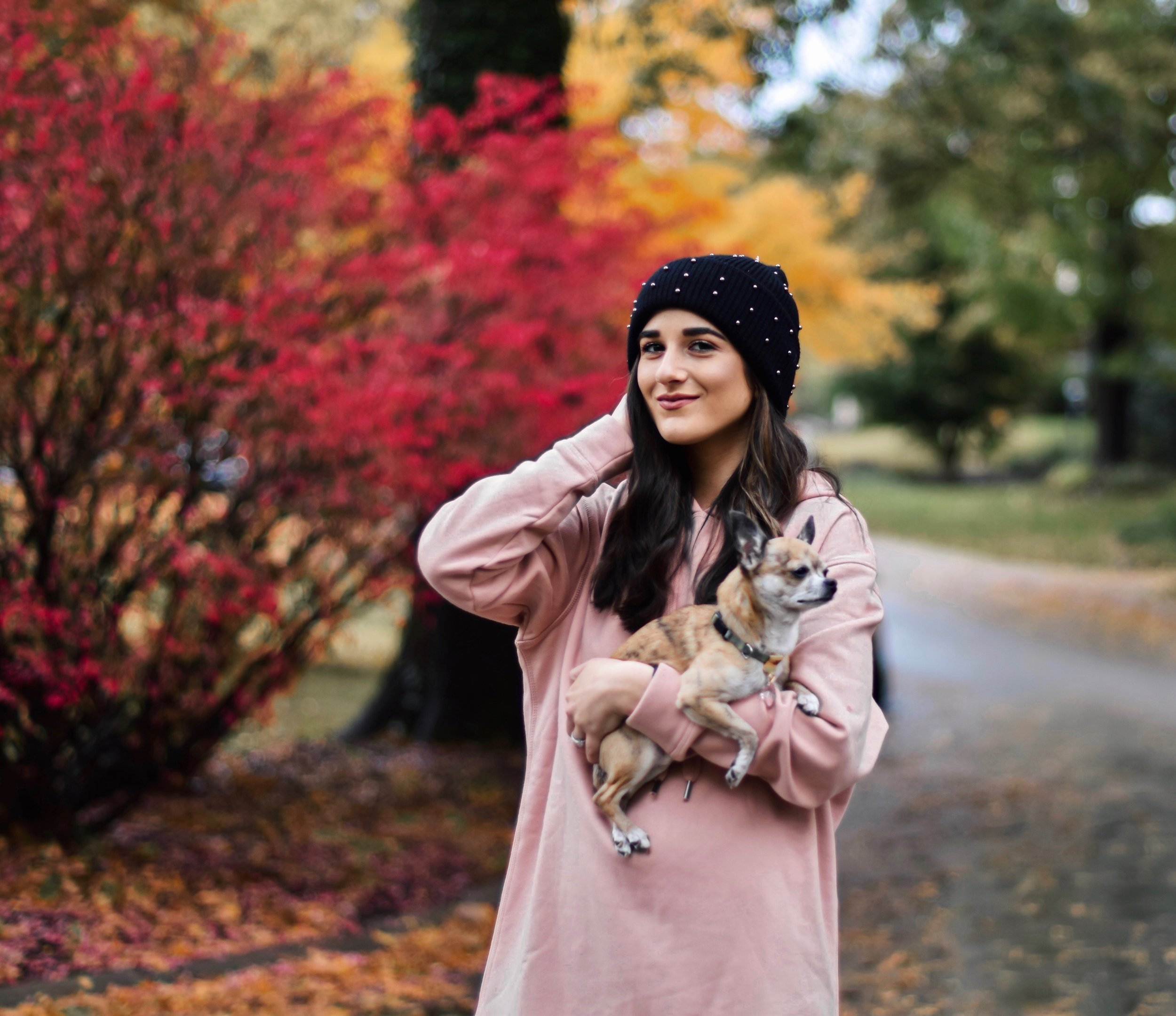 Getting Winter Ready With Macy's Esther Santer Fashion Blog NYC Street Style Blogger Outfit OOTD Trendy Chihuahua Pink Sweatshirt Dress Black Beanie Black Fur Booties Boots Shoes Fall Winter Outfit Tights Beautiful  H&M Shop Cute Puppy Dog Inspiration.jpg
