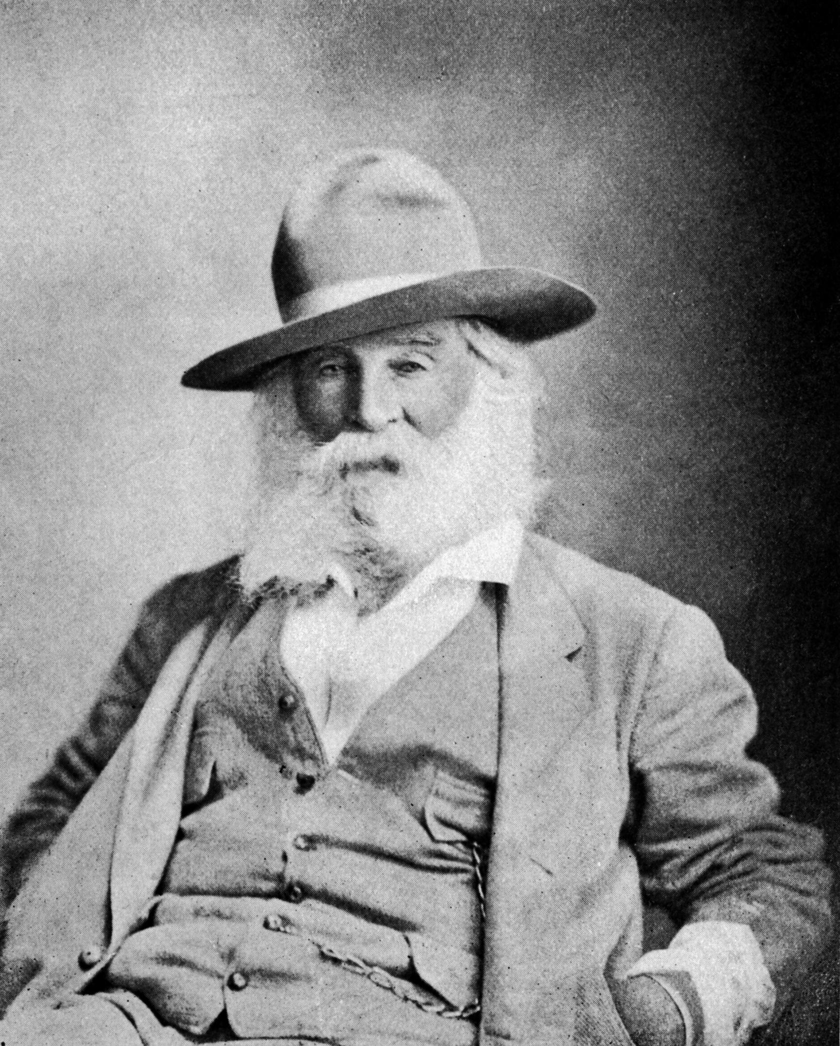 Walt_Whitman_at_65.jpg