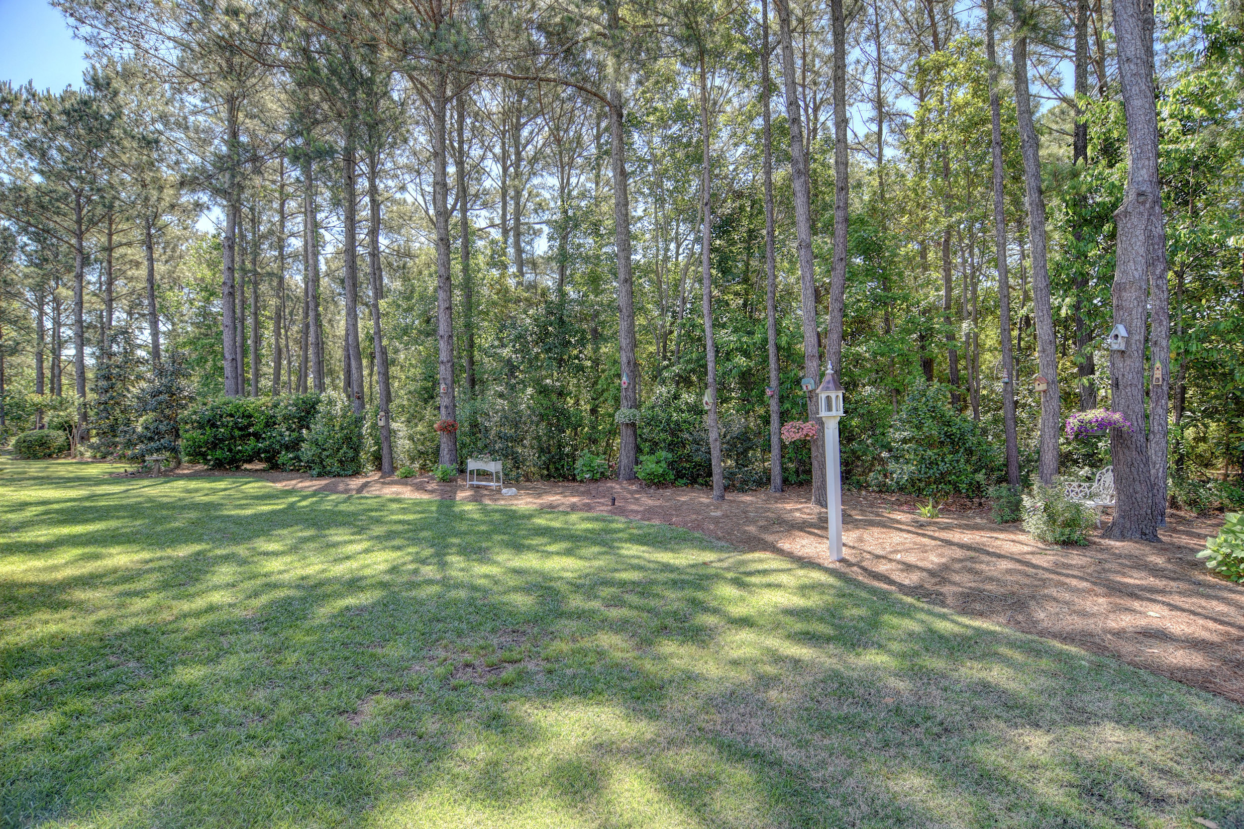 2114 Bay Colony Ln Wilmington-print-031-29-Rear yard-4200x2802-300dpi.jpg
