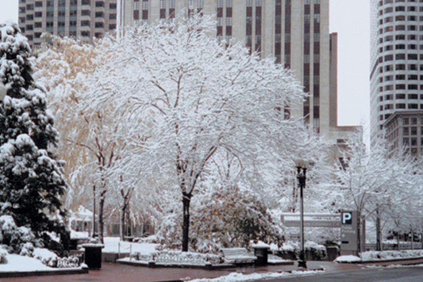 POSq-winter.jpg