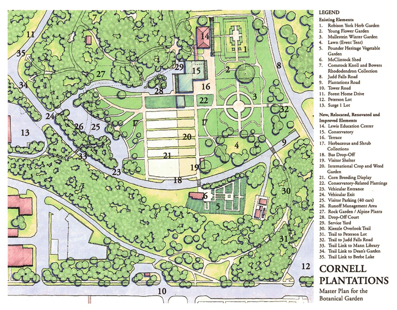 CornellPlant_MP-plan-ppt.jpg