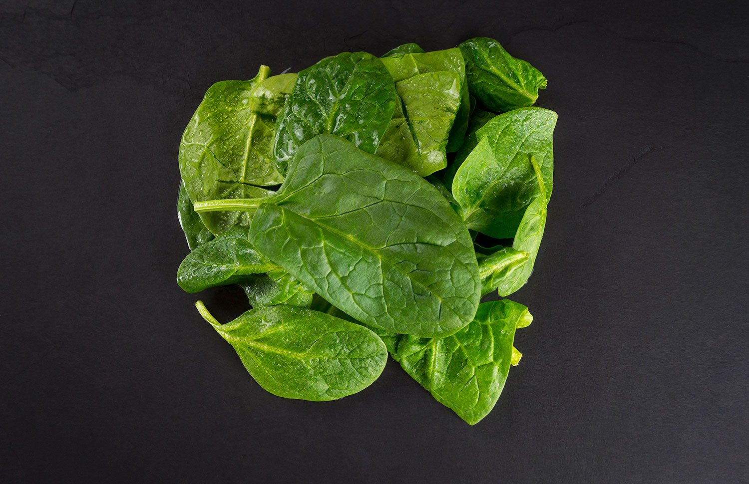 spinach-raw-dog-food.jpg
