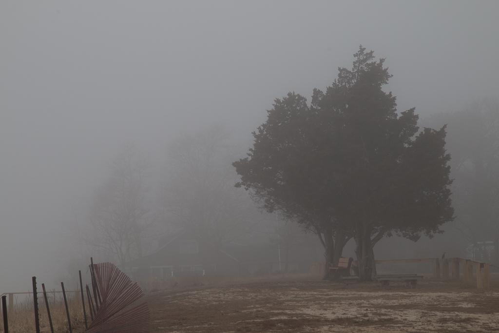 Beach Fog 1