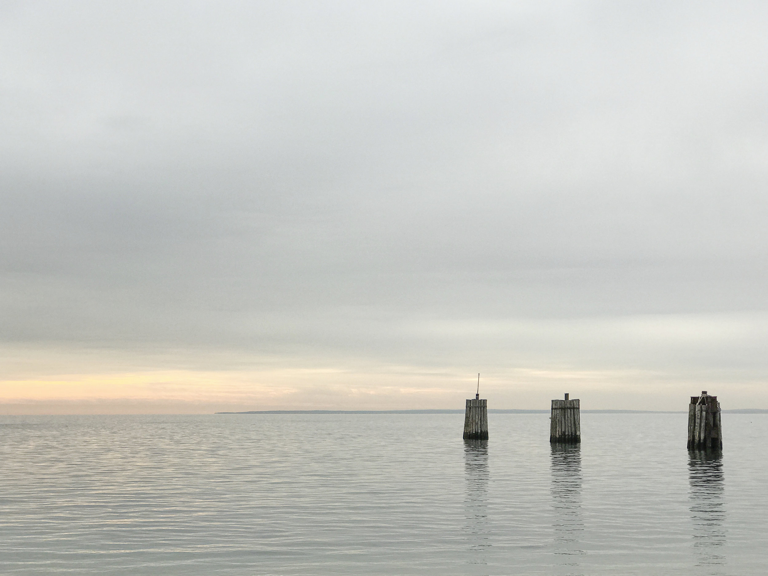Ferry Pilings, Orient NY 2016