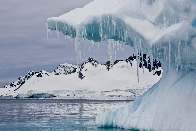 Antarctica-.jpg
