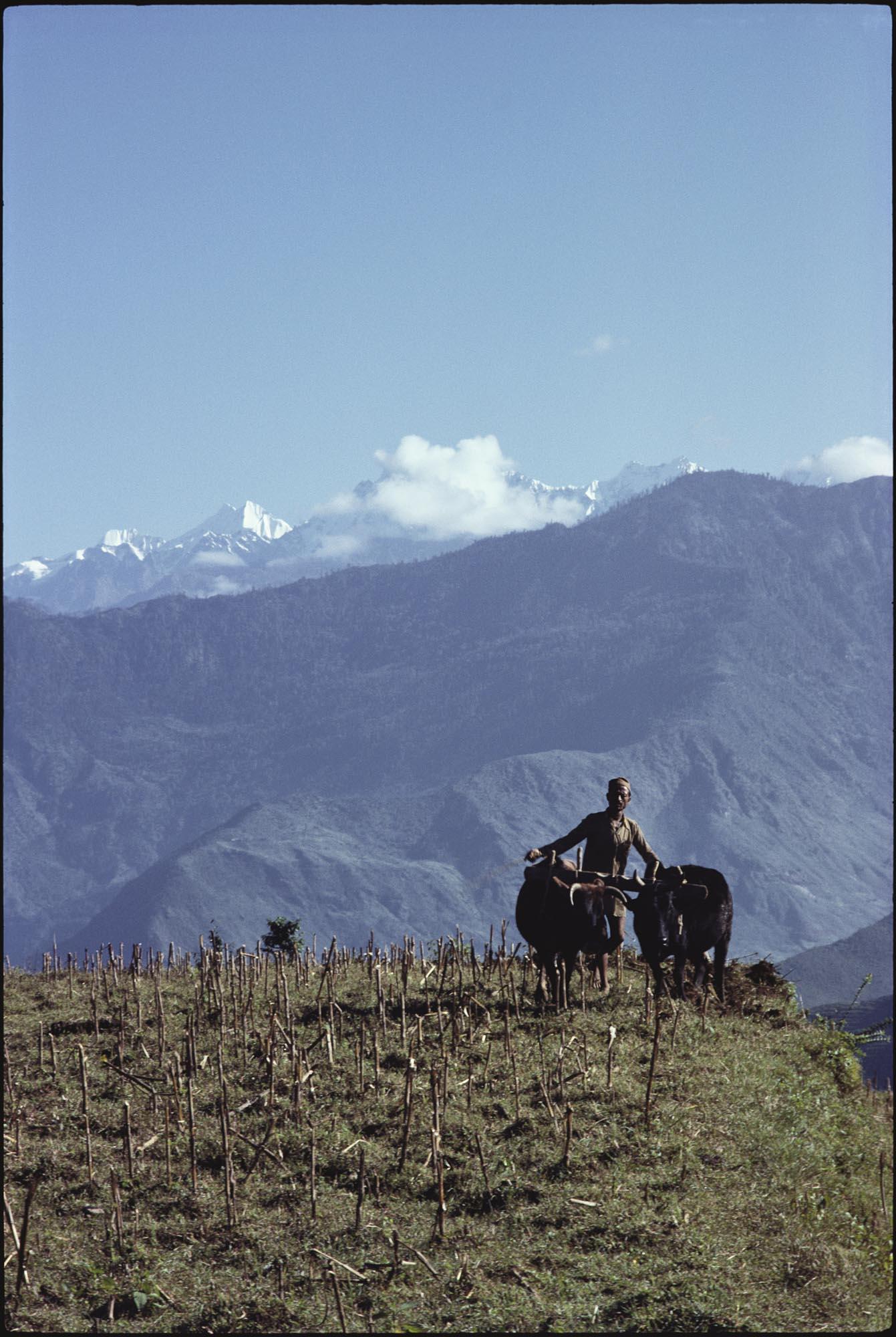 Nepal_Farmer.jpg