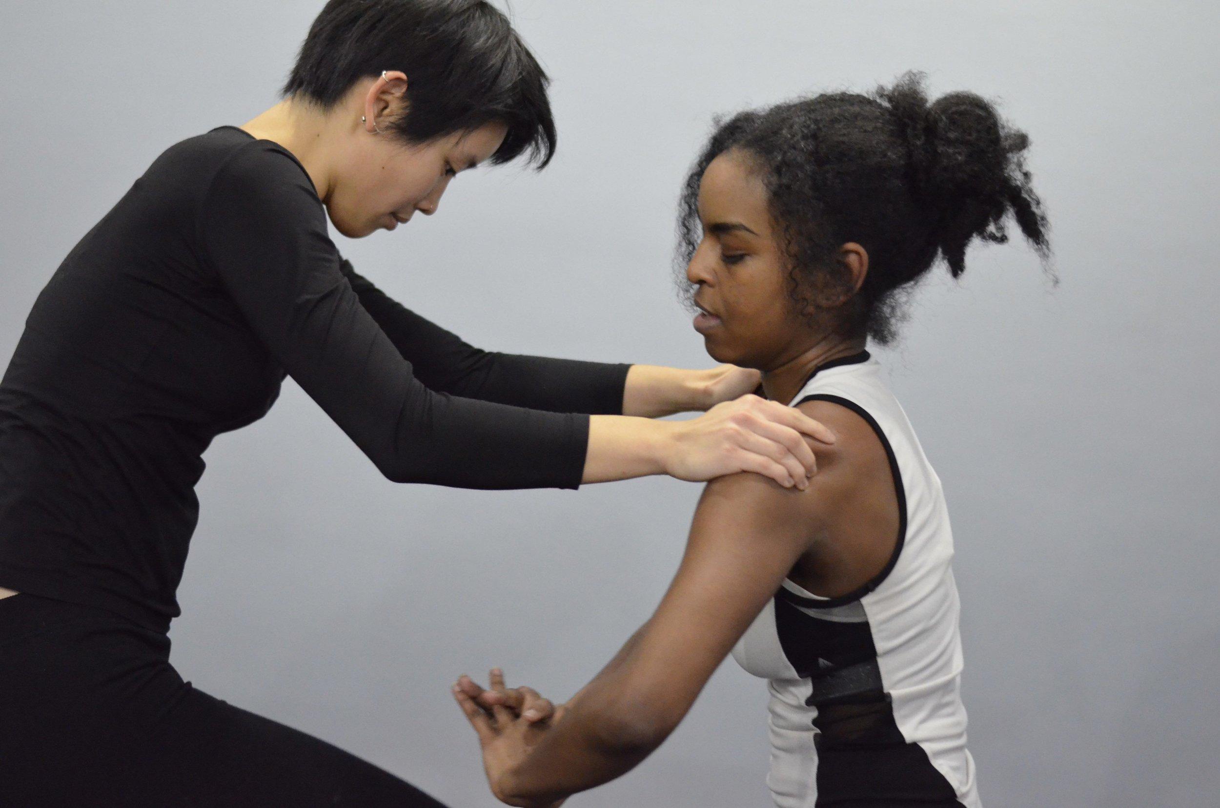 Chicago Mixed Martial Arts