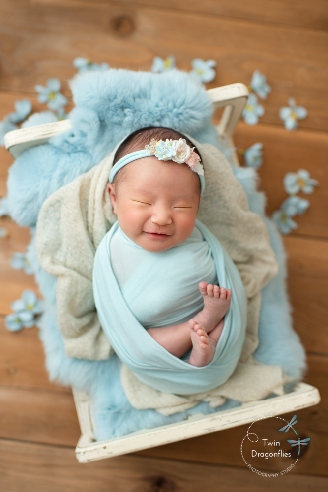Newborn Photo Ideas Blog Twin Dragonflies Photography