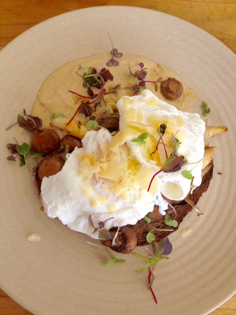 """""""Mushrooms"""" or something similarly non-descript. Mushroom ragout on rye toast with poached eggs and mushroom """"foam""""."""
