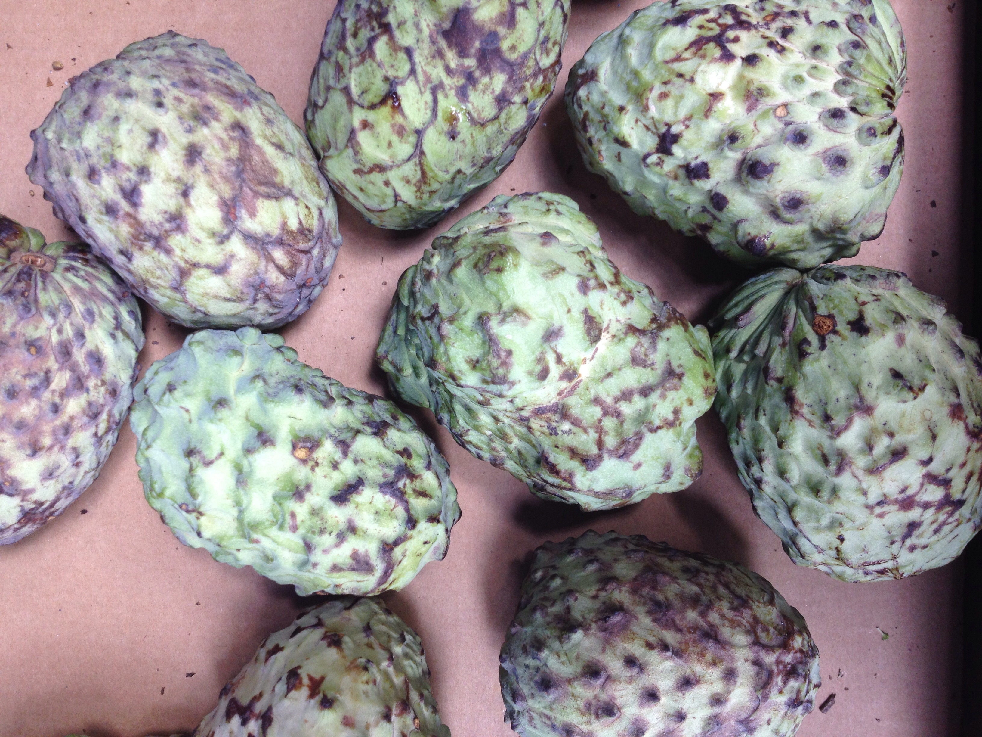 Custard apples, we bought one. They taste ok.