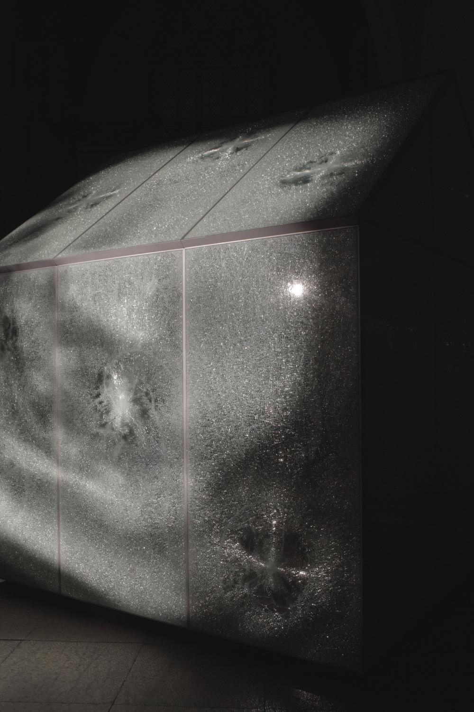 glasshouse-3_copy.jpg