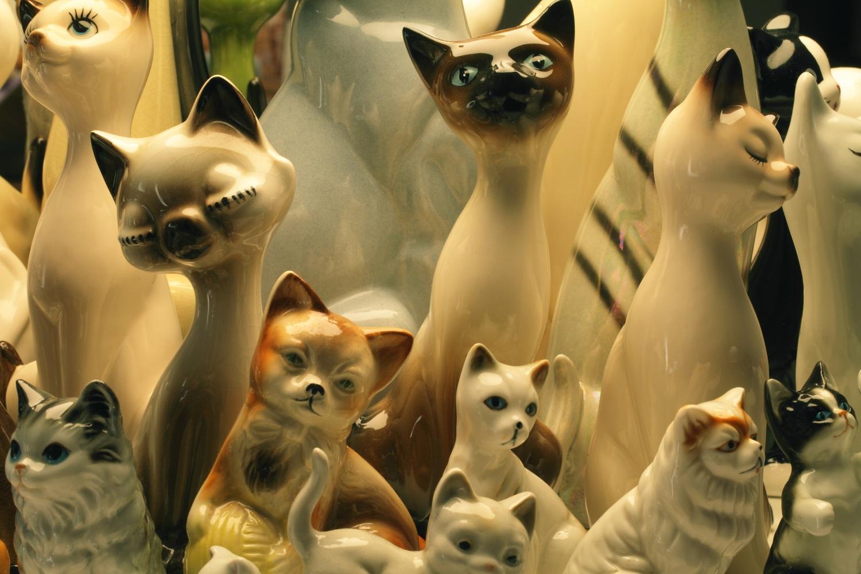 raft-cats-detail.edit1.b_copy.jpg