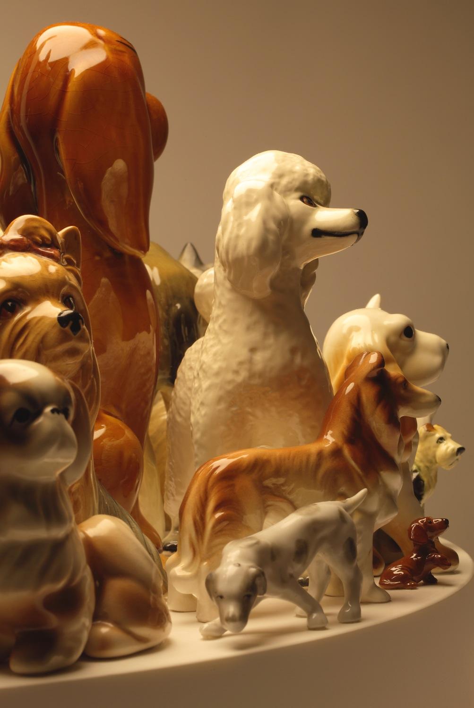 raft-dogs-60-detail8.jpg