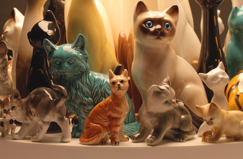 raft-cats-60-detail5.jpg