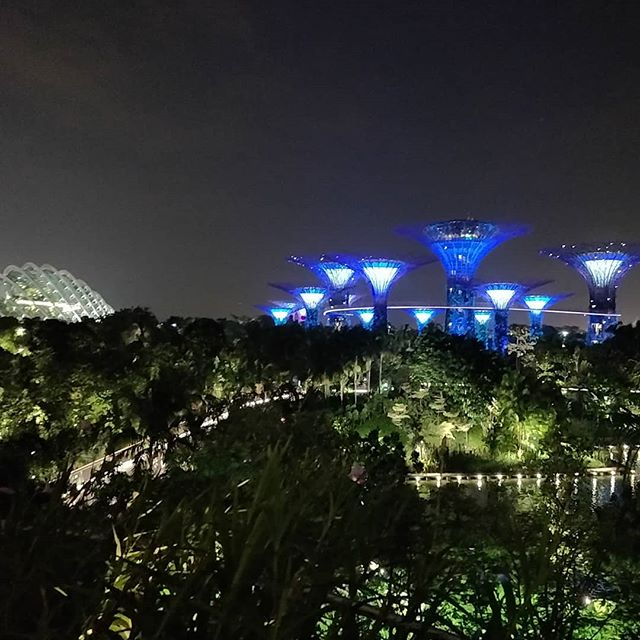 Pretty amazing to take a stroll through #singapore's #gardensbythebay at night. It's quite peaceful and allows for a great view of the city's skyline. #exploringsingapore #worldtraveler