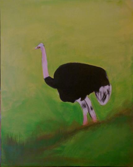 Helplessness Ostrich