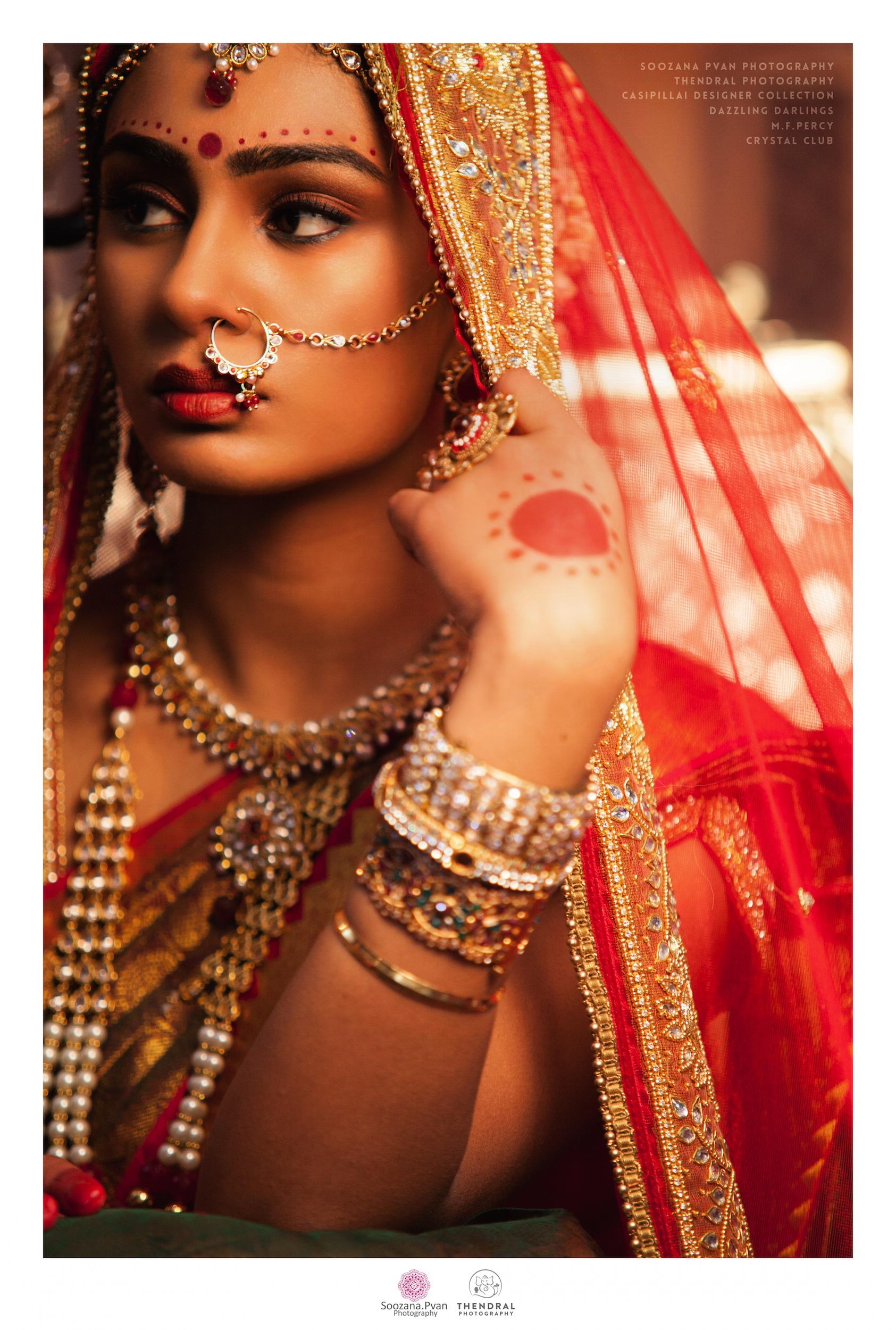JLRoyal Rajasthan 8.jpg