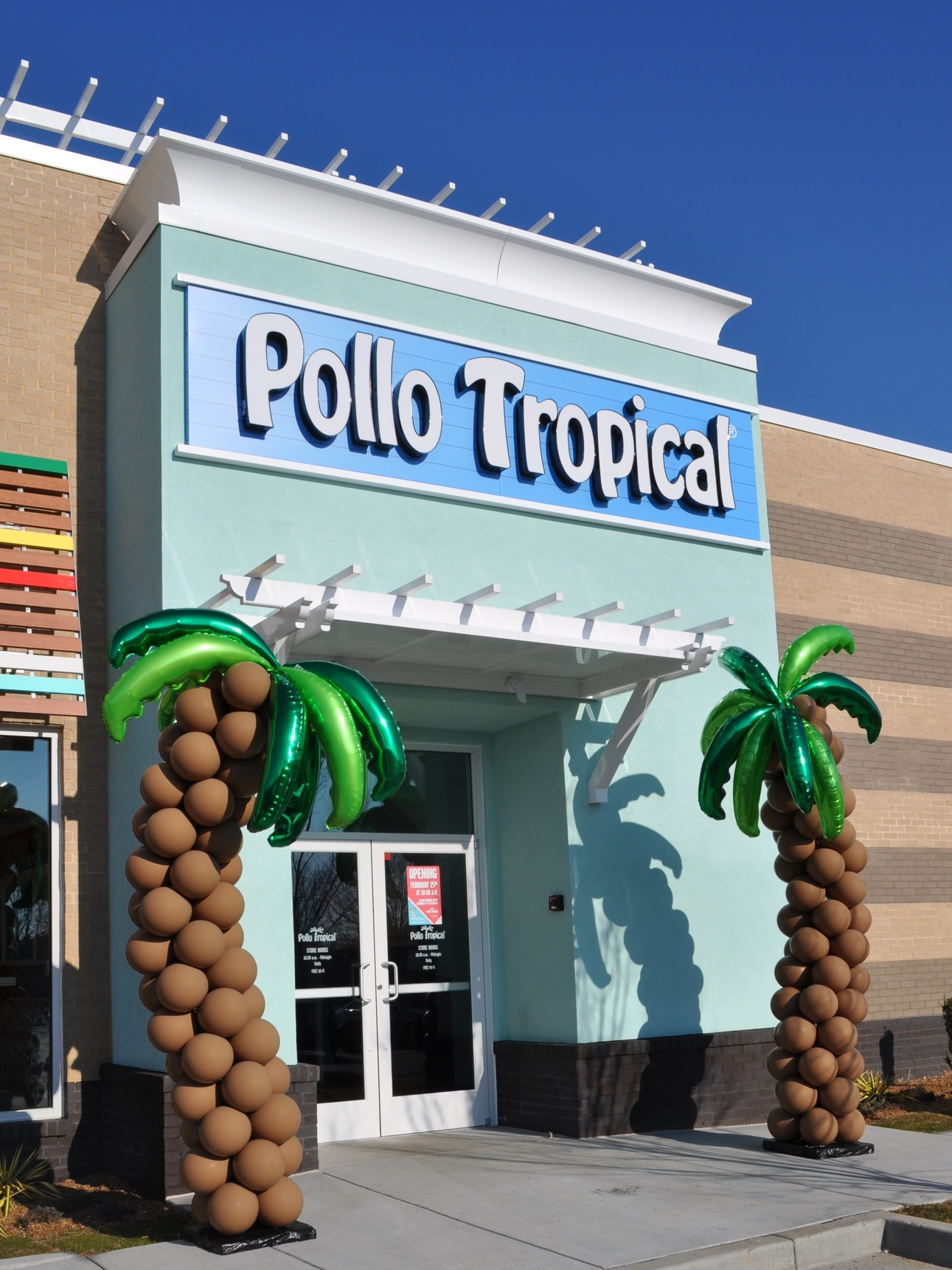 Balloon palm trees for Pollo Tropical