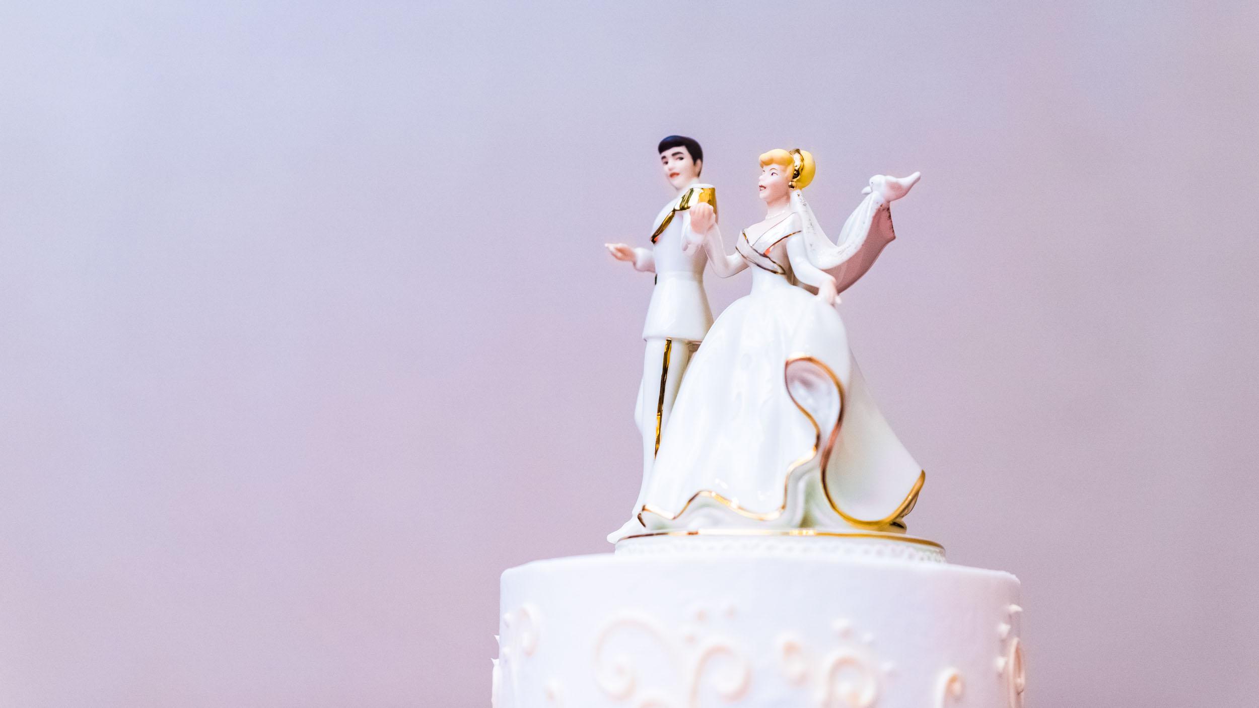 dc+metro+wedding+photographer+vadym+guliuk+photography+wedding+cake-2021.jpg