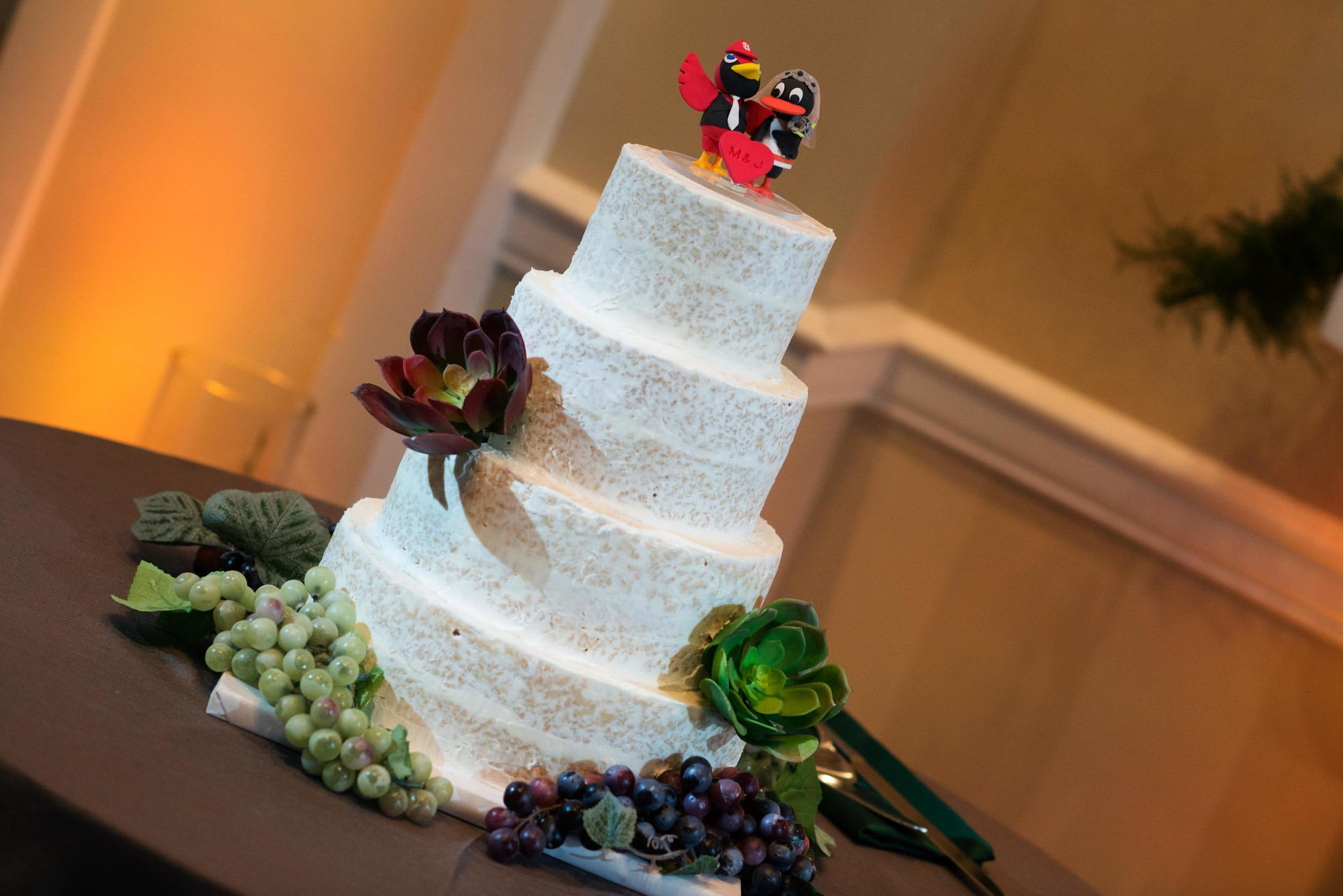 dc+metro+wedding+photographer+vadym+guliuk+photography+wedding+cake-2024.jpg