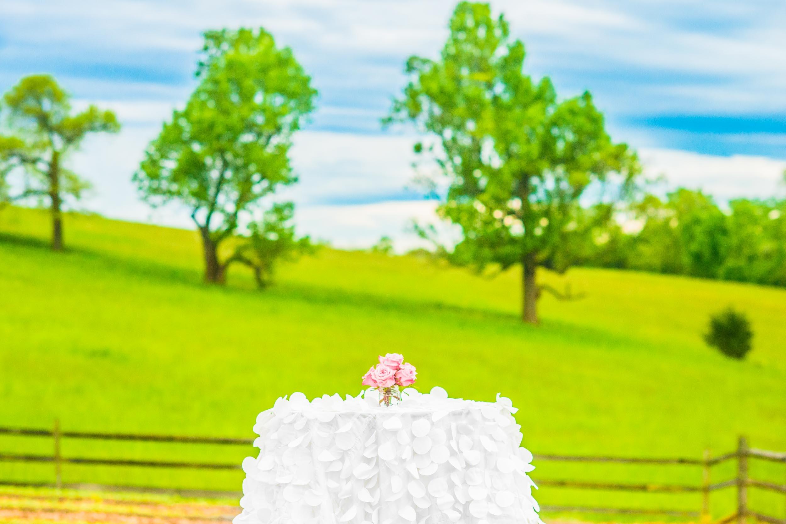 dc+metro+wedding+photographer+vadym+guliuk+photography+wedding+venue-2029.jpg