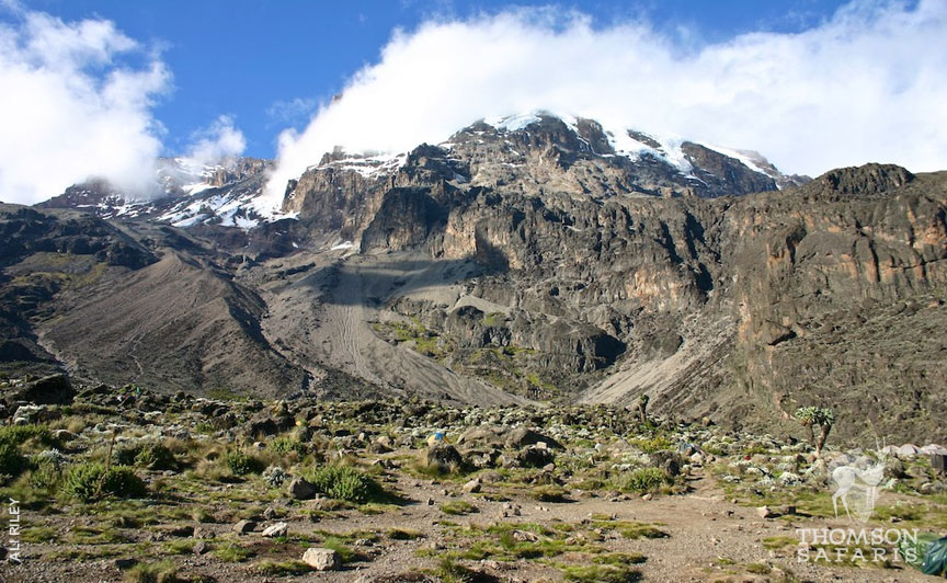 Kilimanjaro: The Highs and Lows 6