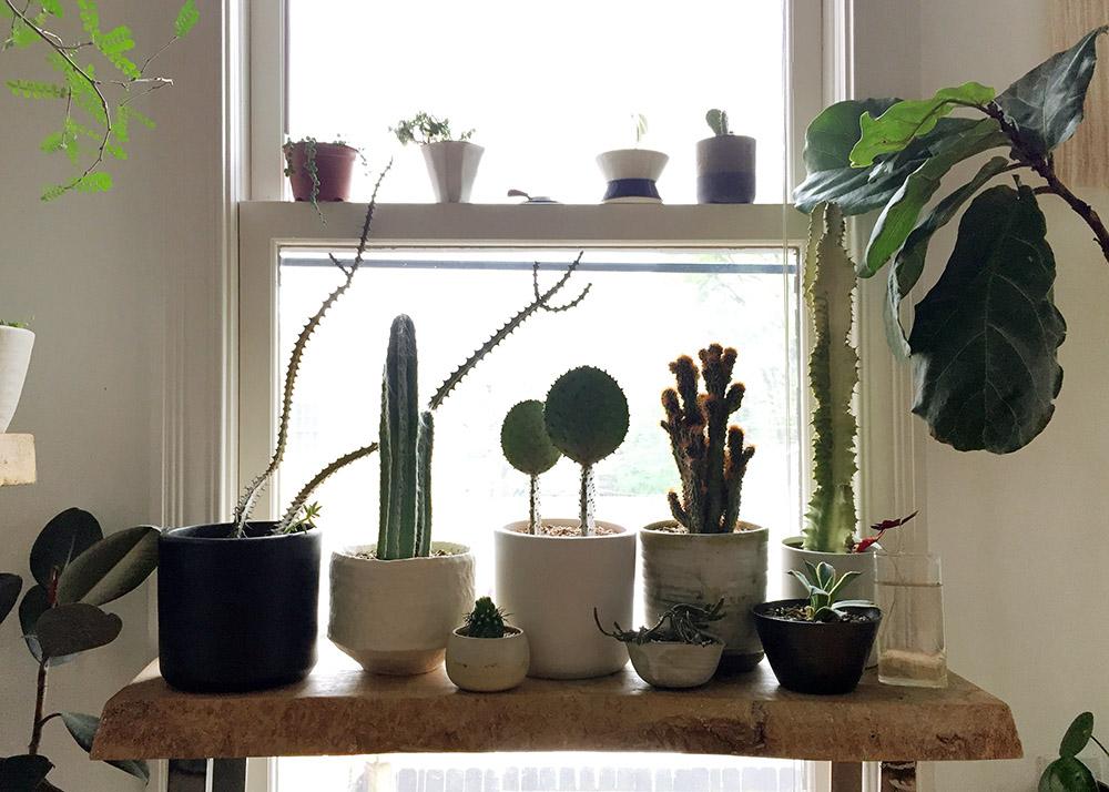 stump spring photo-10002.jpg